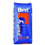 Корм для собак BRIT Adult фото