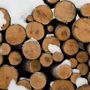 Дрова дубовые, заготовка, доставка, Полтава, Украина фото
