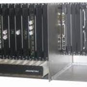 Транспортная телекоммуникационная сеть IP/MPLS/SDH фото