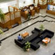 Информационное и художественное оформление офисов фото
