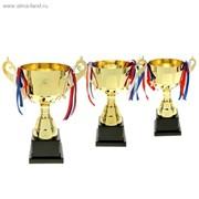 Кубки медали фигурки плакетки фото