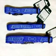 Ошейник Krazy BlueBerry 45-65см фото