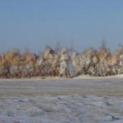 Работы буровзрывные при проходке траншей различных трубопроводных систем фото