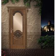Дверь элит класса фото