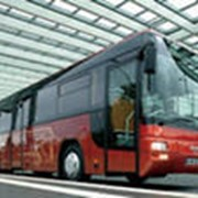Оказание транспортных услуг фото