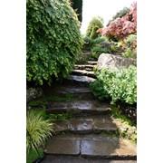 Дорожки, лестницы и подпорные стенки фото