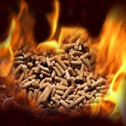 Биотопливо, пеллеты, pellets, pellety фото