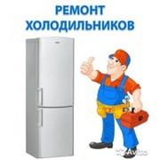 фото предложения ID 17229220