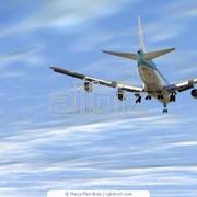 Авиатуры в Бразилию фото