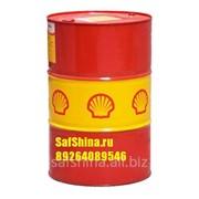 Моторное масло Shell Rimula R6 M 10w40 (209л) фото