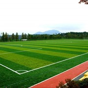 Искусственная трава для футбольных полей фото