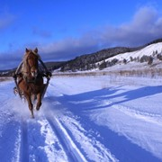 Конно-санный тур Снежный Крака 3 дня фото