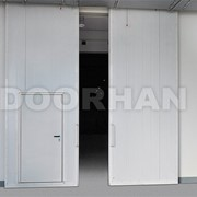 Ворота противопожарные распашные DoorHan фото