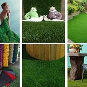 Ландшафтная трава фото