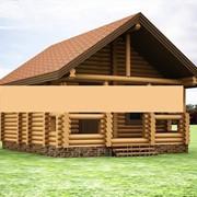 Деревянная баня из бревна фото