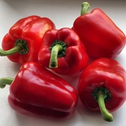 Семена перца подарок молдовы фото