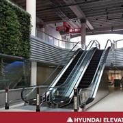 лифты, эскалаторы, травалаторы фото