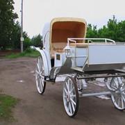 Фаэтон Эдельвейс, Открытая карета Фаэтон модель 1 посадочных мест 4+2 фото