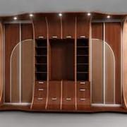 Корпусная мебель фото