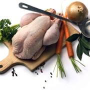 Курица супова фото