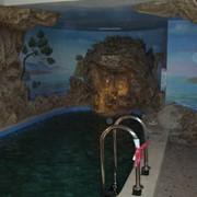 Размещение бассейна на участке фото