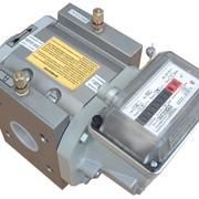 Счетчик газа ротационный RVG G40 фото