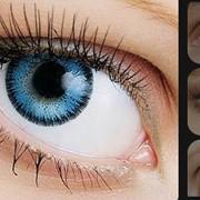 Линзы контактные цветные FUSION фото
