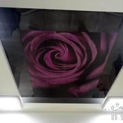 Алюминивые кассетные потолки BAFONI фото