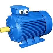 Электродвигатель взрывозащищённый 2В315M6 мощность, кВт 132 1000 об/мин