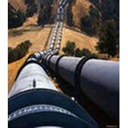 Строительство магистрального нефтепровода фото