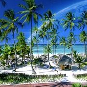 """Пальмы, белоснежные пляжи и райский отдых в Доминикане ждет ВАС! Дейсвует акция """"Раннее бронирование"""""""" на вылеты в октябре, ноябре, декабре) фото"""