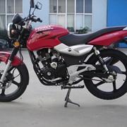 Мотоцикл Cobra 125 см3 фото