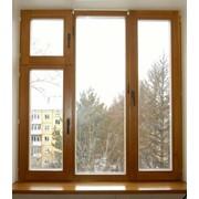Окно экологическое фото