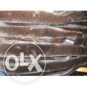 Продам норковую полоску (ленту,тесьму) фото