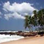 Пляжный отдых на Шри-Ланке фото