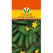 Семена огурца Клодин фото