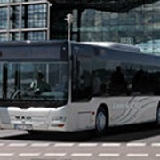 Автобусы городские Lion's City фото