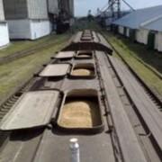 Перевозки грузовые железнодорожным транспортом зерновых культур фото