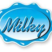 Оборудование для переработки молока и изготовления сыров MILKY фото