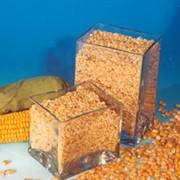 Премиксы для сельскохозяйственных животных,Зерно, продажа и закупка,комбикорм,пшеница,зерновые культуры,комбикорм для коз,комбикорм для свиней, фото