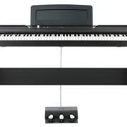 Цифровое пианино Korg SP-170DX (BK) фото