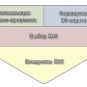 Разработка и внедрение корпоративных информационных систем фото
