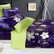 Комплект постельного белья, бязь, евро, Хризантема фото