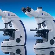 Микроскоп прямой Primo Star фото