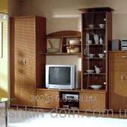 Гостиная Тристан Gerbor -стенка для гостиной фото