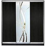 Двери-купе с зеркалами и пескоструйным изображением фото