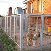 Гостиница для животных «Лохматый друг» фото