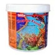 Корм для тропических рыб Super Food 1000 мл фото