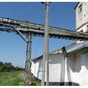 Отгрузка 1 тн зерна автотранспортом всех зерновых культур фото