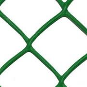 Решетка заборная АгроПолимер 55*55/1.5*25 фото